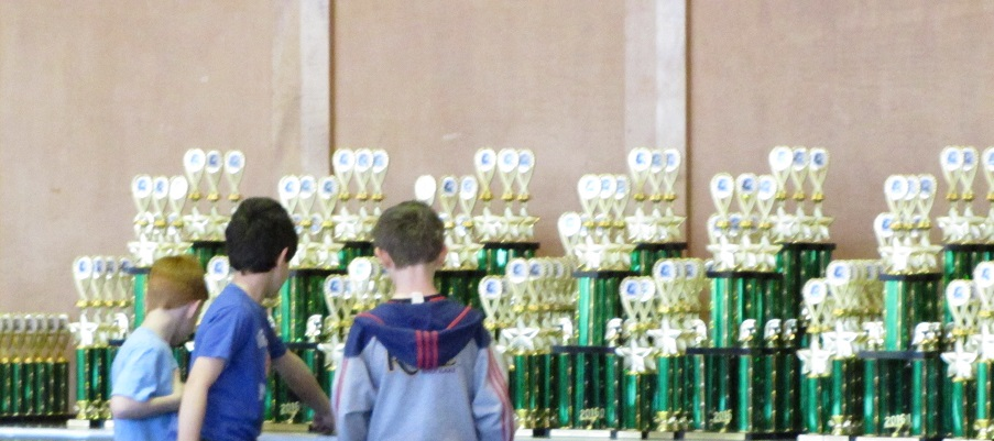 pre-tournament - chess trophies